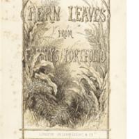 Fanny Fern - illustrated title _B3V3137.jpg
